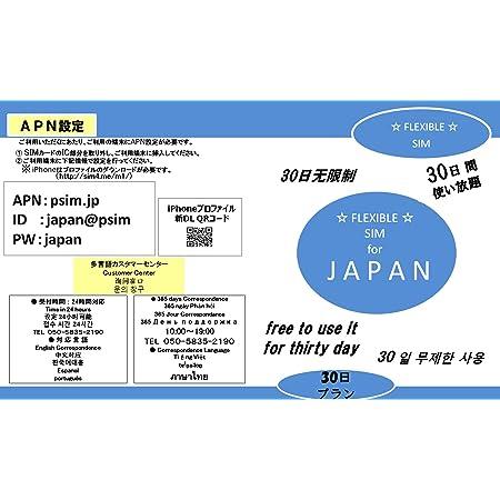 FLEXBLE ☆ SIM ☆ JAPAN 国内データ通信SIMカード 【 30日間 使い放題 プラン 】 (NANO SIM 対応) NTT docomo 高速LTE 無制限タイプ Only in JapanAB-0108D ※使用が新しくなりました。