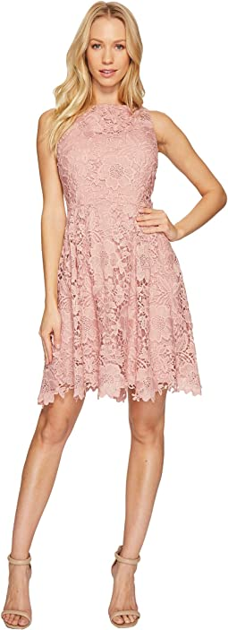 CeCe - Claiborne - Sleeveless Lace A-Line Dress