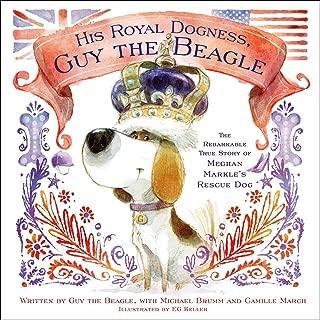 Best guy beagle Reviews