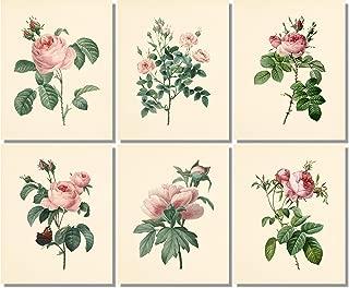 Best rose vintage art Reviews
