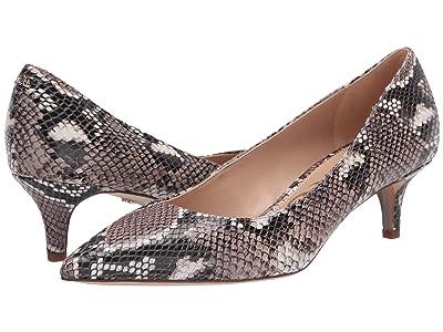 Sam Edelman Dori (Taupe Exotic Snake Print Leather) Women