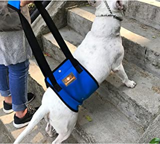 Blue Dog Lift Support Harness with Handle for Canine Older or Injuries Hind Leg-Lifting K9 for Injuries, Arthritis or Joints.Assist Sling for Rehabilitation & Stability & Mobility