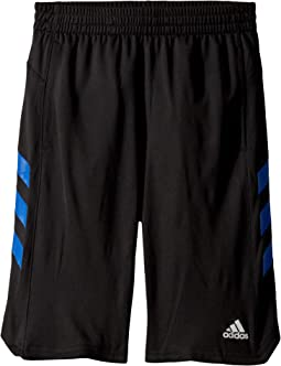 812865b510e6 Boy's adidas Kids Shorts + FREE SHIPPING | Clothing | Zappos.com