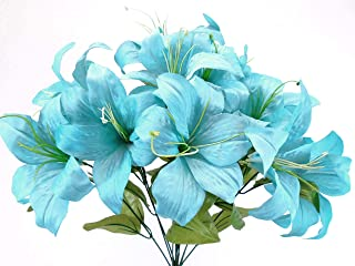 turquoise tiger lillies