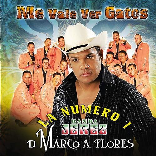 Me Vale Ver Gatos [Explicit] by La Numero 1 Banda Jerez De Marco A. Flores on Amazon Music - Amazon.com
