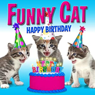Best cats singing happy birthday Reviews