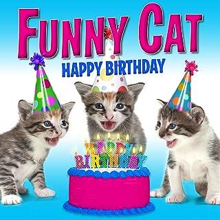 Best happy cat dance Reviews
