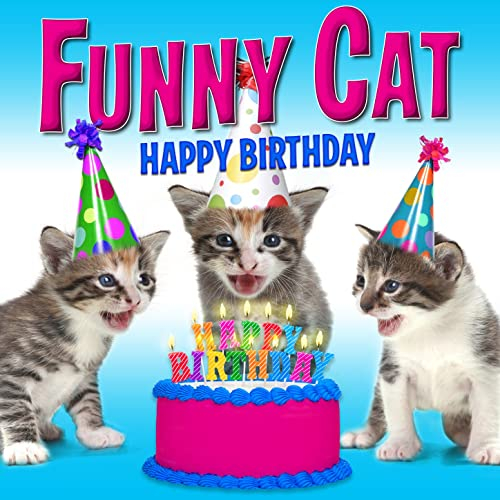 Happy Birthday Funny Cats Singing Version By On Amazon Music