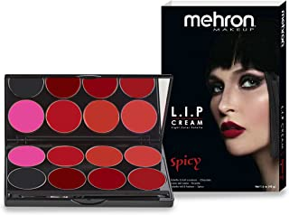 Mehron Makeup Highly Pigmented Semi-Matte LIP Cream (8 Color Palette: Spicy)