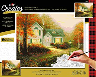 Plaid Enterprises, Inc. 44603 The Blessing of Autumn Paint by Number Kit, 16