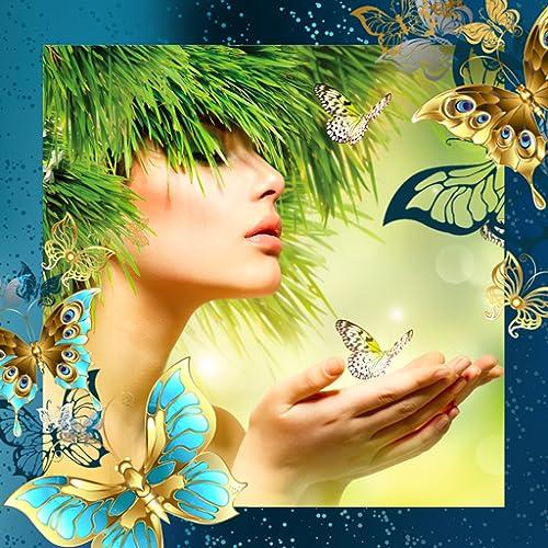 Colagem da foto da borboleta