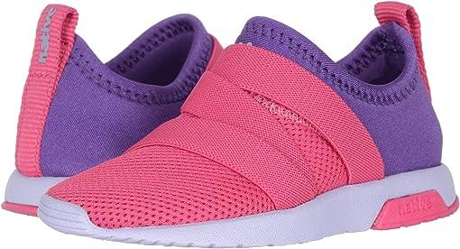 Hollywood Pink/Starfish Purple/Powder Purple