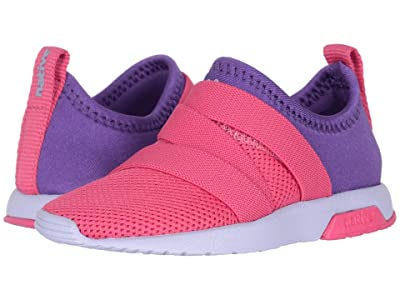 Native Kids Shoes Phoenix (Toddler/Little Kid) (Hollywood Pink/Starfish Purple/Powder Purple) Girls Shoes