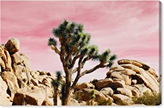 The Oliver Gal Artist Co. Nature and Landscape Wall Art Canvas Prints 'Joshua Tree Pink' Home Décor, 15