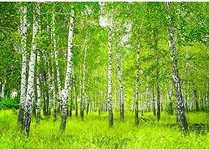 Suchergebnis auf Amazon.de für: fototapete grün