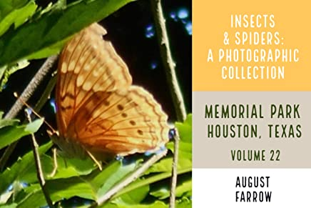 Insects & Arachnids: A Photographic Collection: Memorial Park: Houston Texas - Volume 22 (Arthropods of Memorial Park) (English Edition)