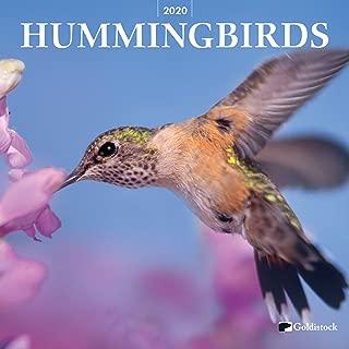 Best hummingbird wall calendar Reviews