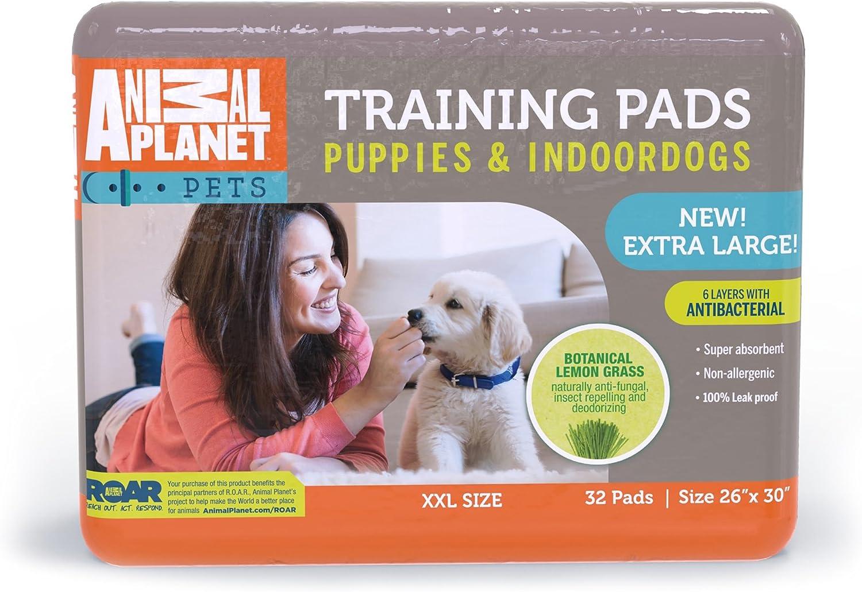 ANIMAL PLANET 23407 Indoor Puppy XL Training Pads, 26  x 30