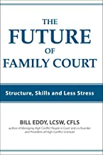 The Future of Family Court: Structure, Skills and Less Stress (English Edition)