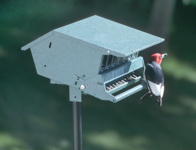 Audubon Birds Delight Squirrel Resistant Bird Feeder Model 7511i Pack of 2