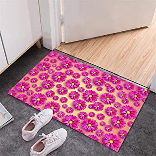 BISXOTY Mother's Day Mats,Easter Day Decoration Doormats,Anti-Skid Bottom Floor Mats,Indoor Outdoor Carpet,Entrance Mats,N...
