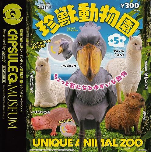 Capsule Q Museum seltene Tier Zoo alle fuenf Set Mini