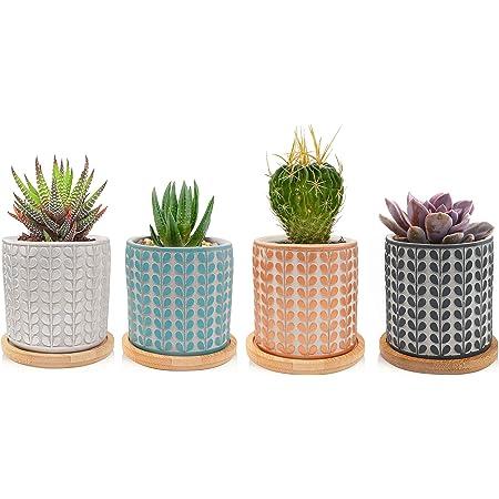 4pcs Cute Mini Pot Succulent Planter Pot w// Ears Herbs Pots Vase Garden Decor
