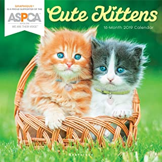 """Graphique Cute Kittens ASPCA Wall Calendar - 16-Month 2019 Calendar, 12""""x12"""" w/ 3 Languages, 4-Month Preview, Marked Holid..."""