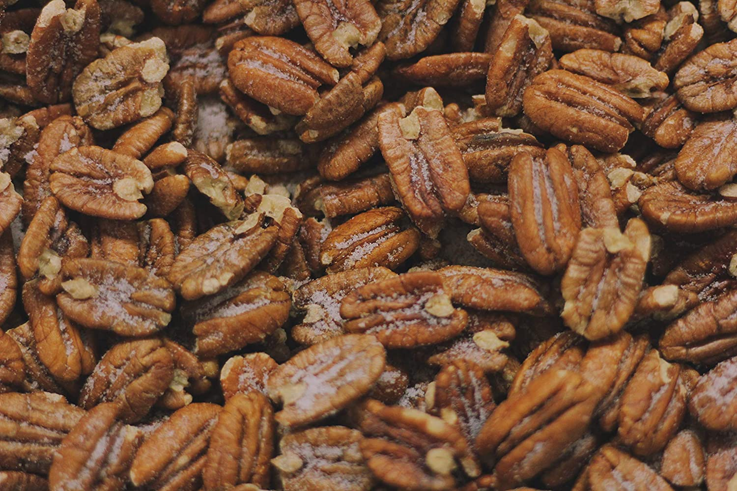 Fried Salted Pecans 1lb Atlanta Mall Time sale