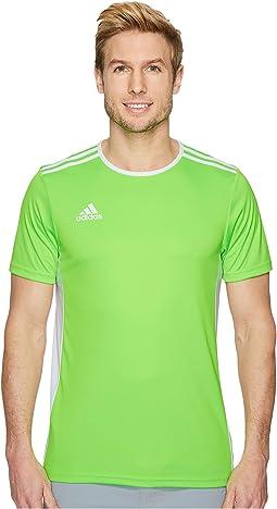 Solar Green/White