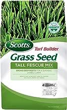 fawn fescue grass