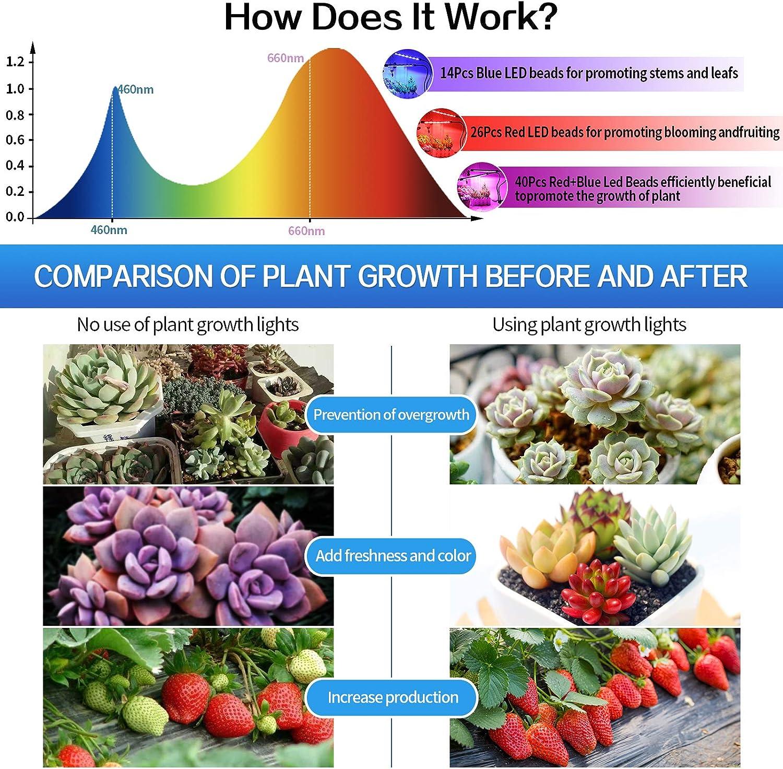 L/ámpara LED Cultivo de 2 Cabezales de Espectro Completo para Jardiner/ía Bonsai 20W Lamparas Led Cultivo Strips Grow Light con 360/° Adjustable Clip 20W Colmanda L/ámpara para plantas