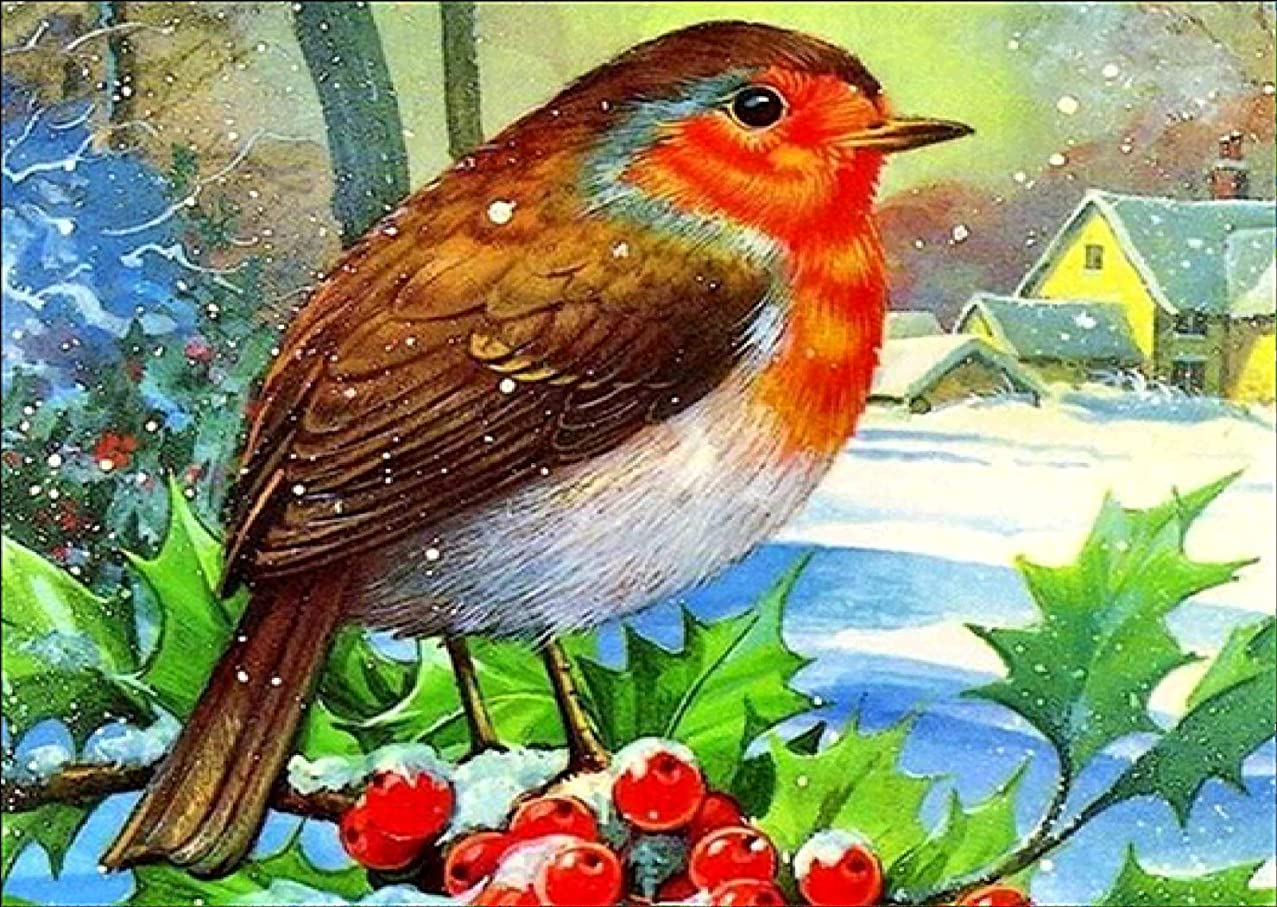 DIY 5D Diamond Painting Kit, Bird Animal Full Drill Embroidery Cross Stitch Arts Craft Canvas Wall Decor