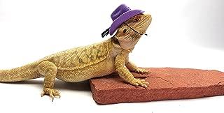 Carolina Designer Dragons' Bearded Dragon Cowboy Hat, Purple