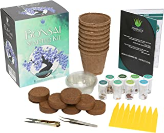 Ashbrook Outdoors Bonsai Starter Kit to Grow 8 Colorful Bonzai Trees - Complete Gardening Set