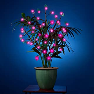 """Exhart Cherry Blossom Lights – Tall Decorative LED Flower Bush with 40 LED Pink Lights on A Timer to Light up the Soft, White Cherry Blossom Flower Lights (40"""" W x 36"""" L x 36"""" H)"""