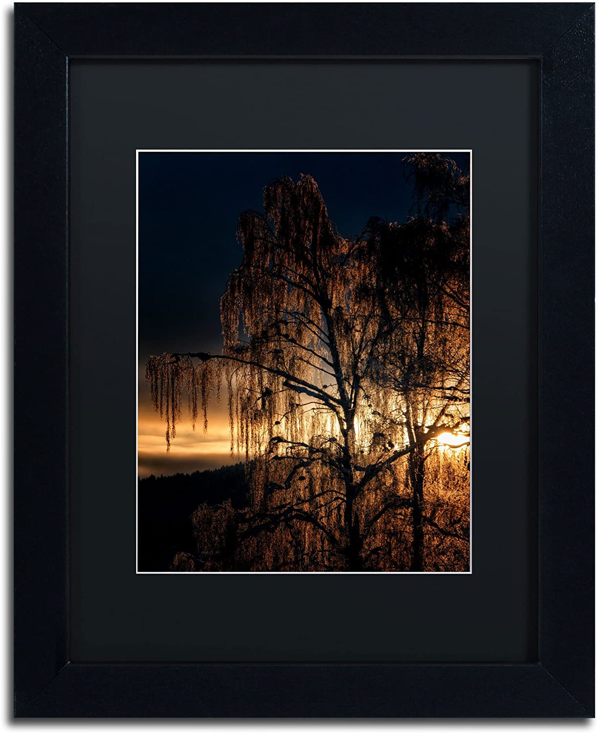 Trademark Fine Art golden Tree Canvas Artwork by Erik Brede, 11 by 14Inch, Black Matte with Black Frame