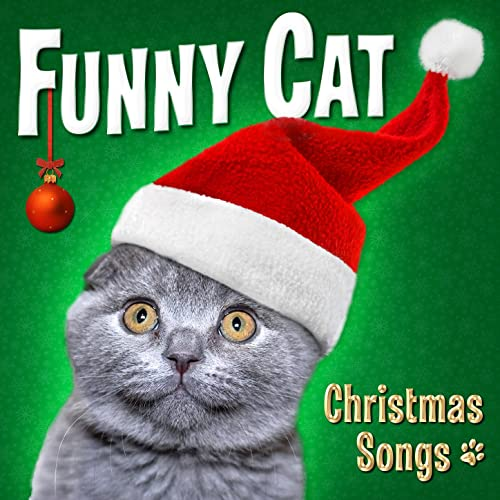 Funny Cat Christmas Songs by Funny Cats on Amazon Music