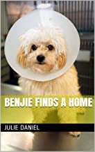 Benjie Finds a Home (English Edition)