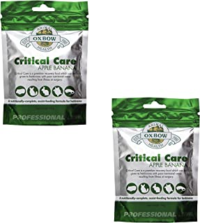 Oxbow Critical Care Apple/Banana Pet Supplement, 141gm (2 Pack)