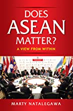 Does ASEAN Matter?: A View from Within