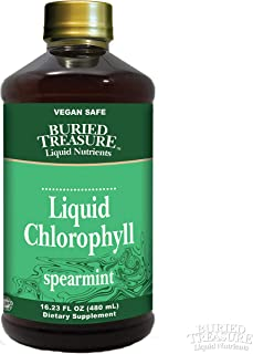 Liquid Chlorophyll All Natural 100 mg Chlorophyll, Immune, Detox, Intestinal & Digestive Support Natural Body Deodorant, Spearmint Flavor 16oz