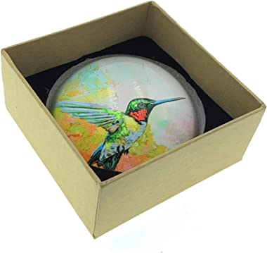 Value Arts Hummingbird Glass Dome Paperweight, 3 Inches Diameter