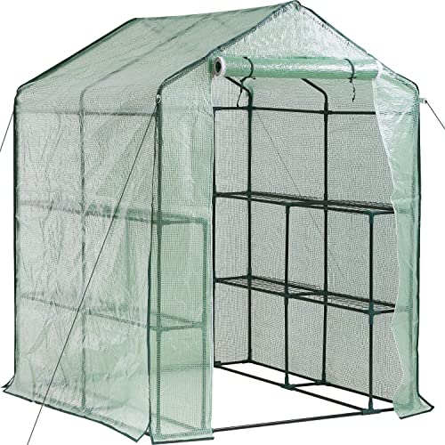 """BestMassage Greenhouse for Outdoors Greenhouse Plastic Mini Greenhouse Kit L56.5""""W56.5""""H76 Indoor Portable Greenhouse Plant Shelves Tomato Herb Canopy Winter Walk-in Green House for Patio"""