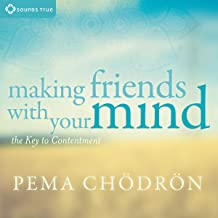Best making friends with your mind Reviews