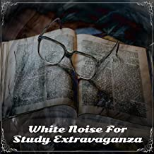 White Noise For Study Extravaganza