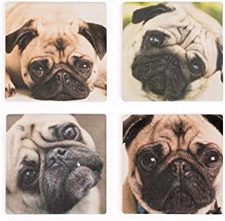 P. Graham Dunn Pug Dog Faces 5 x 5 Super Absorbent Ceramic Coasters, Set of 4