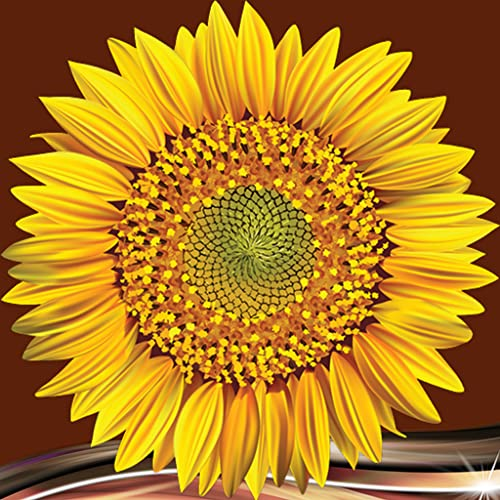 Sonnenblume Fotocollage