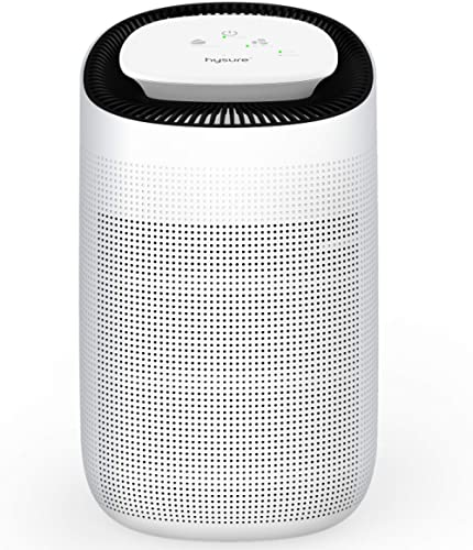 Hysure Air Dehumidifier with/Air Purifying Function 1000ml True HEPA Filter,Ultra-Quiet Portable for Small Rooms, Bat...