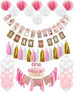 First Birthday Girl Decoration kit- Complete Set for One Year old Party- Beautiful Pink Pastel Colors for First Baby Girl Birthday -Rustic I'm One and Photo Banner - by IBB Packaging